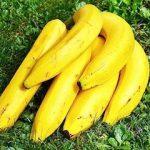 【バナナティー】バナナを皮ごと煮た「茹で汁」で不眠症が改善する?